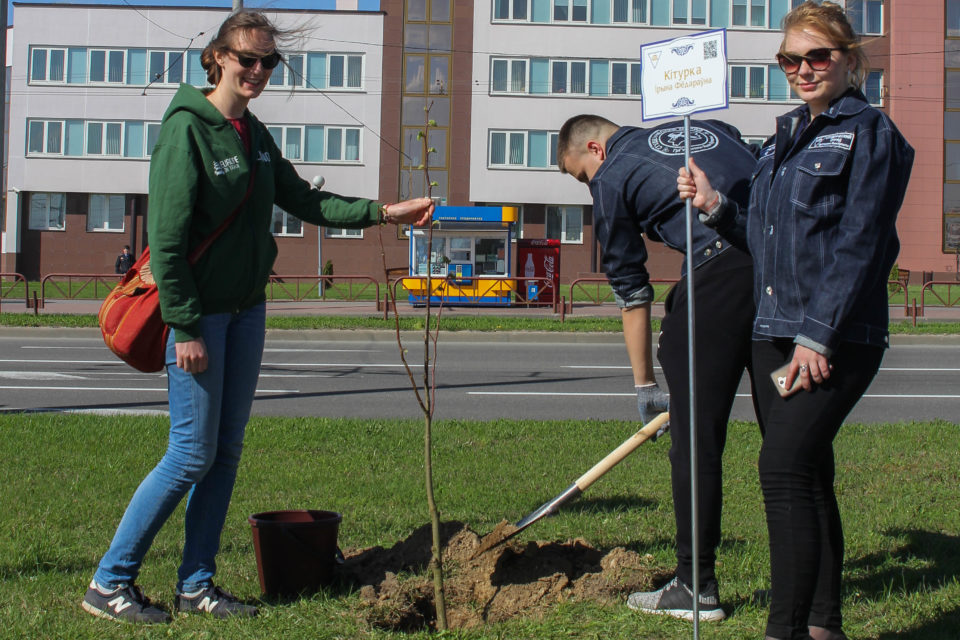 tree planting in Grodno